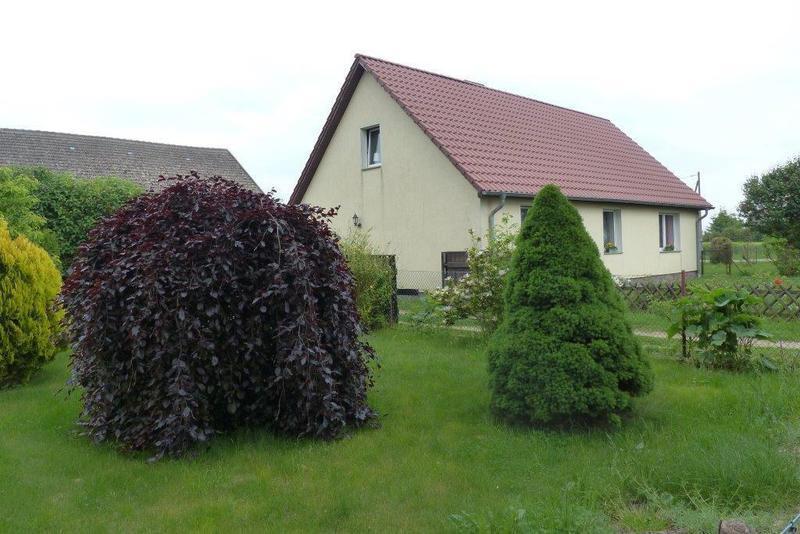 Lage: 5 km von Grimmen