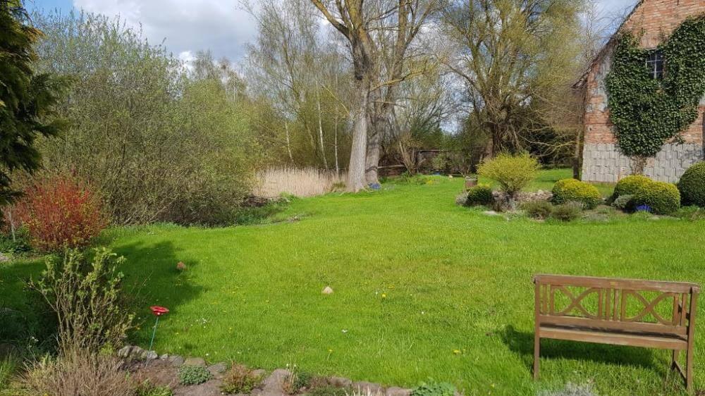 Grundstück im Frühjahr